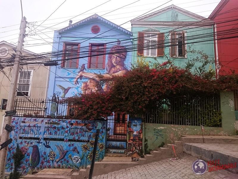 Foto Celeste con Mural