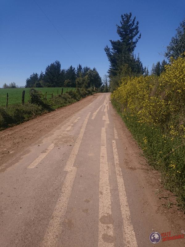 Lineas de ruta confusas