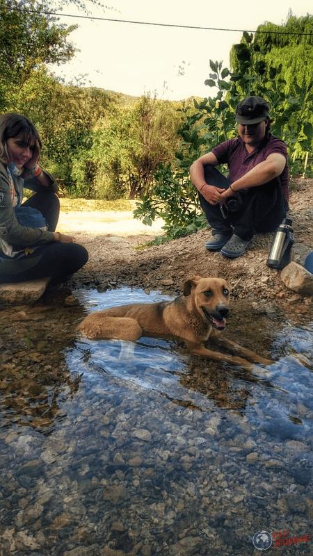 Con perrito en Chilecito