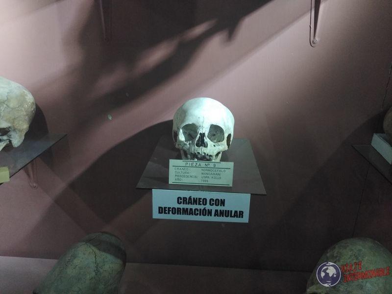 Craneo Museo Oruro