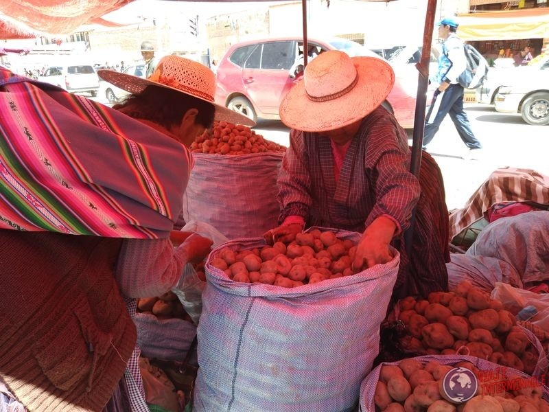 Vendedoras de papas en Oruro