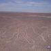 Las Lineas de Nazca SI se ven desde el suelo