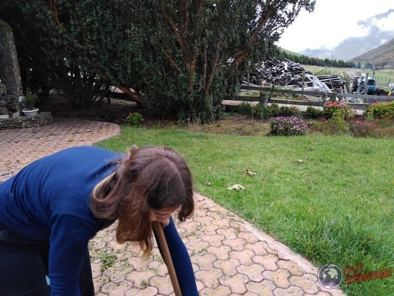 Deshierbando en granja organica Pifo Ecuador