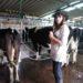 Nuestra experiencia negativa en una granja orgánica