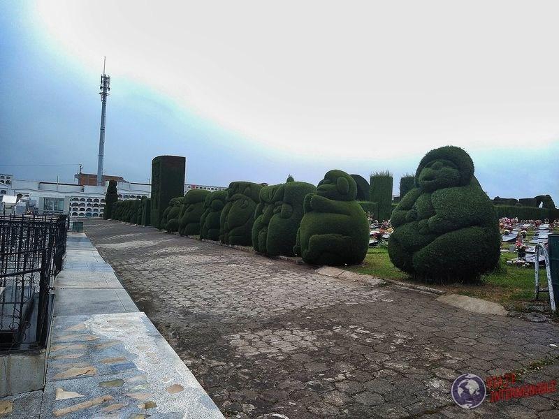 Gorditos de cementerio de tulcan Ecuador