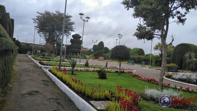 Plantas en Cementerio de Tulcan Ecuador