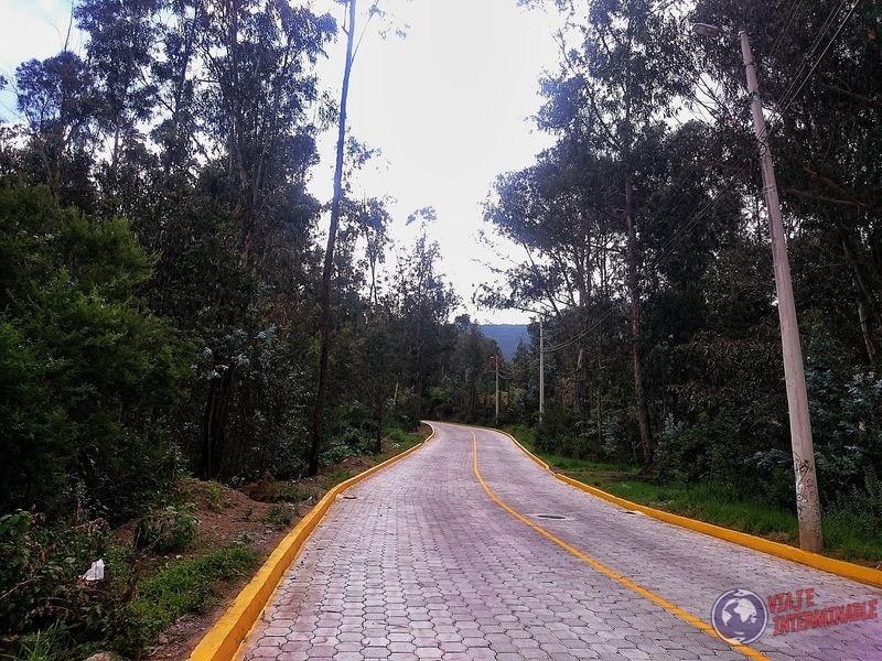 Ruta rodeada de bosque cumbaya Ecuador