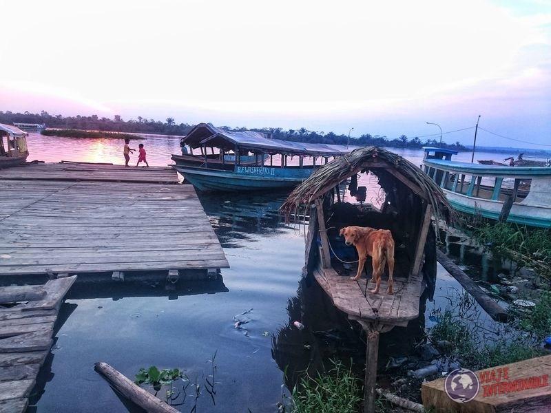 Botes y perrito en Santa Clara Peru