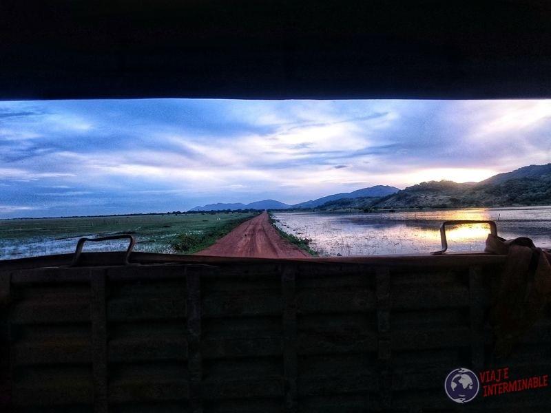 Guyana Vista desde el camión de guerra ruta