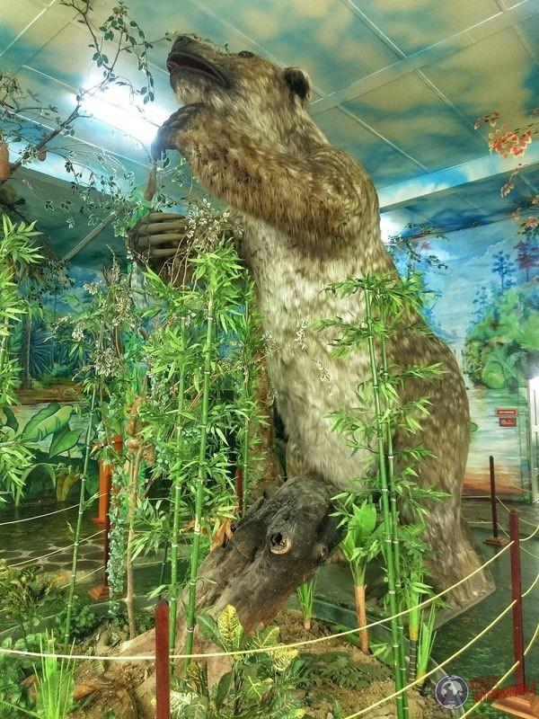 Megatherium perezoso gigante Museo Nacional Georgetown Guyana