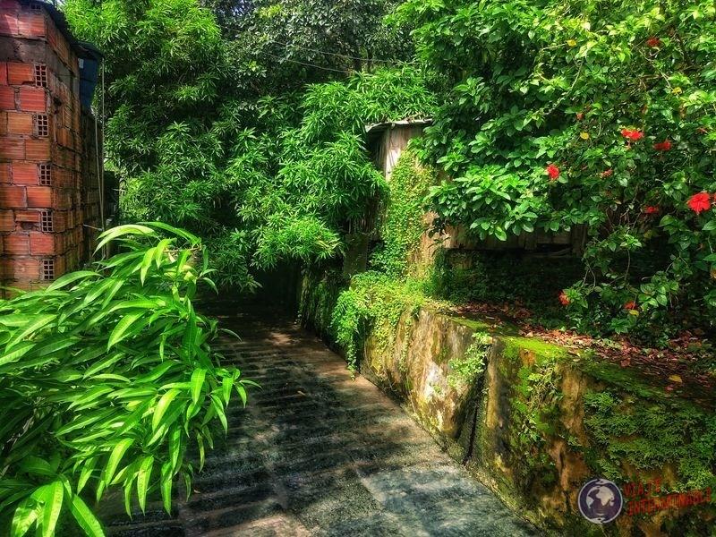 Pasajes que encantan Manaos Brasil