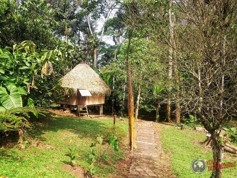 Reserva Waorani Pompeya Pashpanchu Ecuador