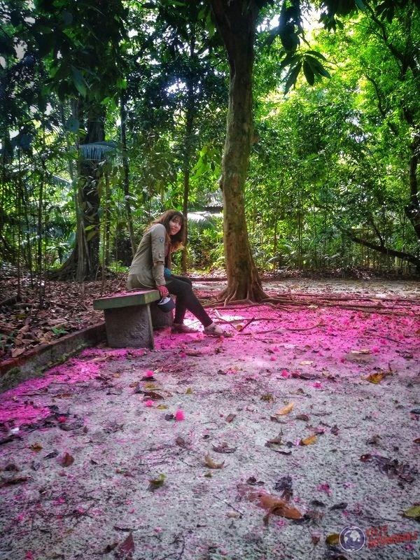 Zoo del hotel tropical Manaos Punta negra Brasil