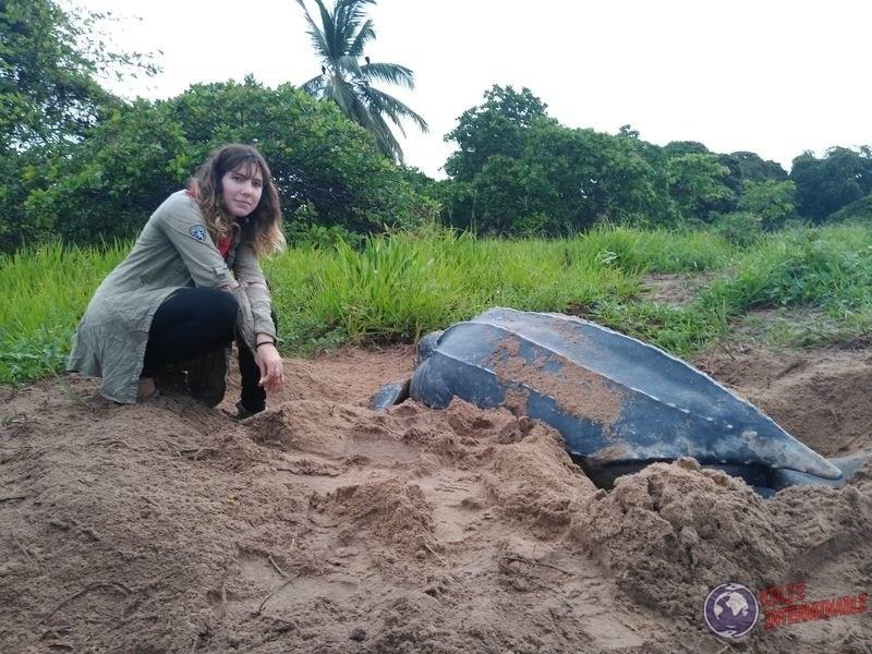 Con tortuga Laud playa Guayana Francesa
