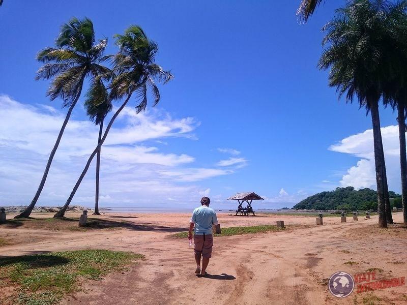 Costa con palmeras Cayenne Guayana Francesa