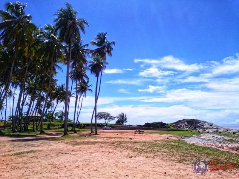 Costa de Cayenne con palmeras y mesas Guayana Francesa