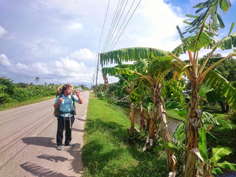 Ruta en Surinam