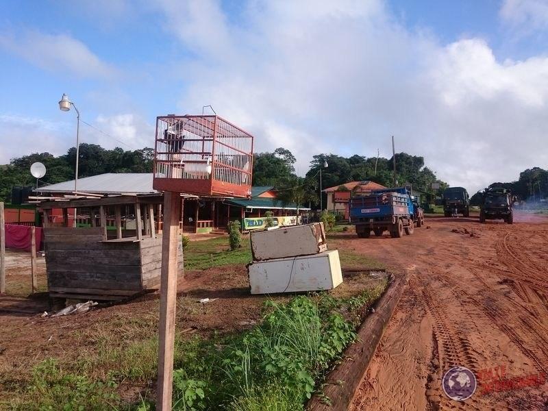 Los pajaritos de Guyana Mabura