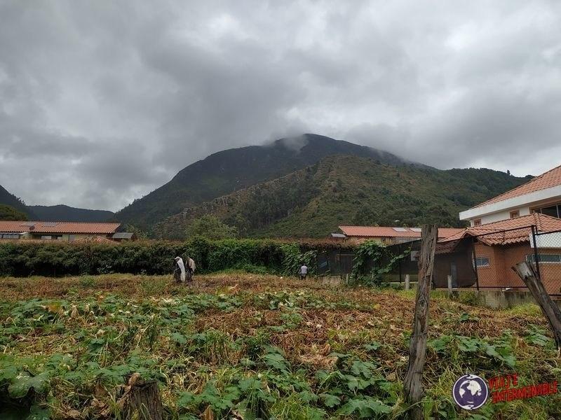 Paisaje rural Cota plantaciones Colombia
