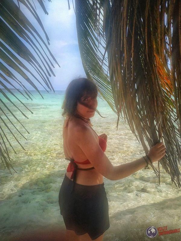 hojas de palmera san blas panama playa caribe