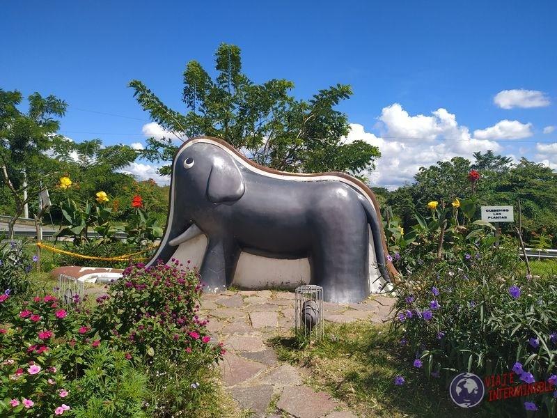 Elefante y sombrero el Principito El Salvador