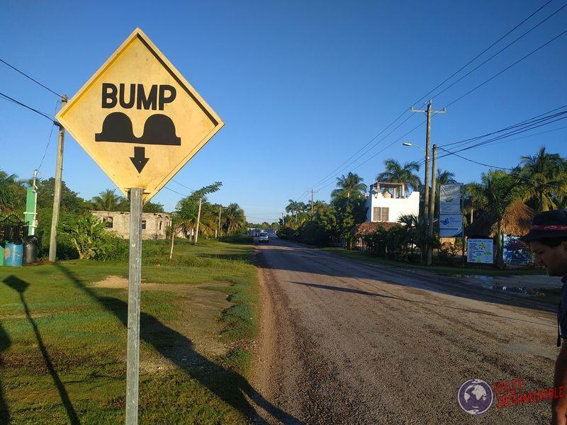 Bump Belice Lomos de Burro