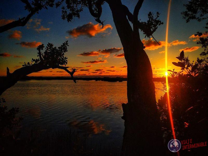 Atardecer Puerto Morelos oscura Mexico