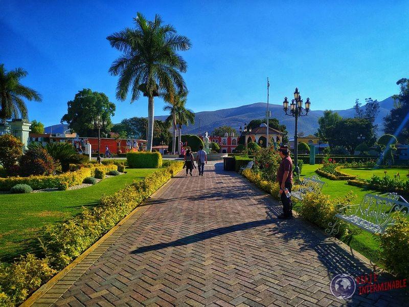 Plaza de El Tule Oaxaca Mexico