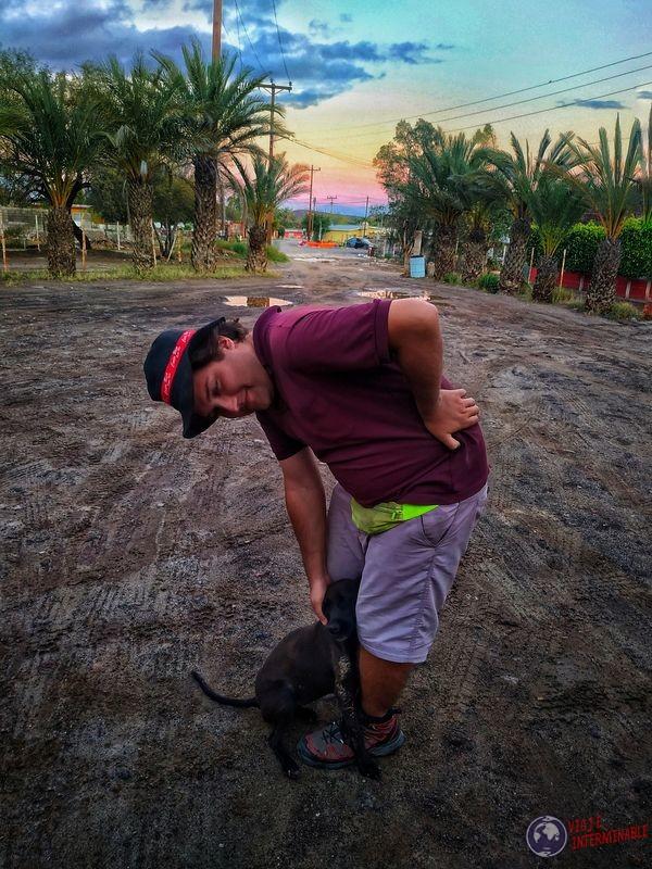 Wa con perrito en San Lino Baja California