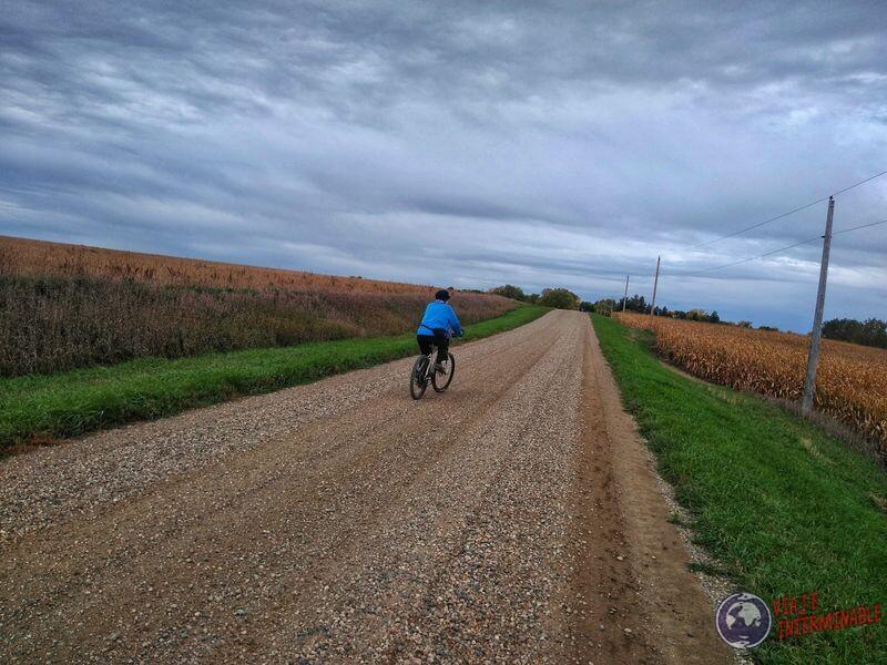 Campo maiz en bicicleta Minnesota EEUU USA