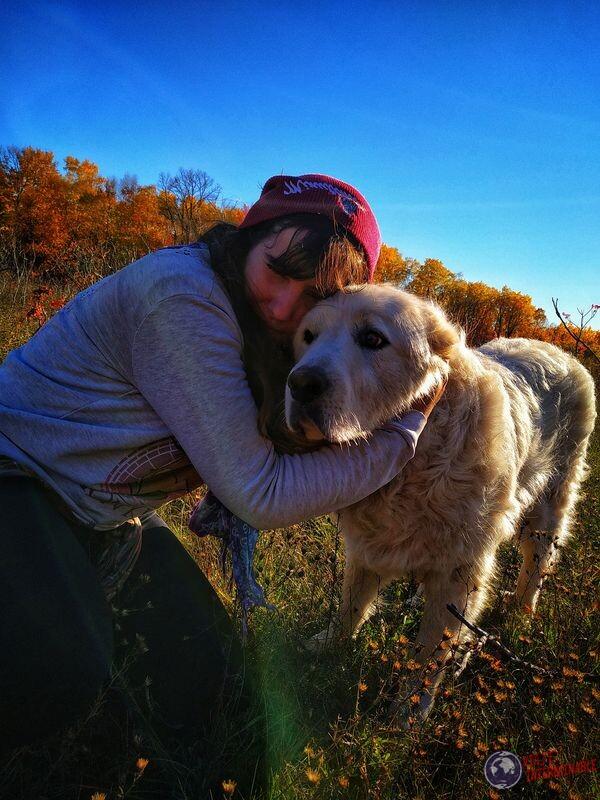 Perro gigante en Winsconsin EEUU USA