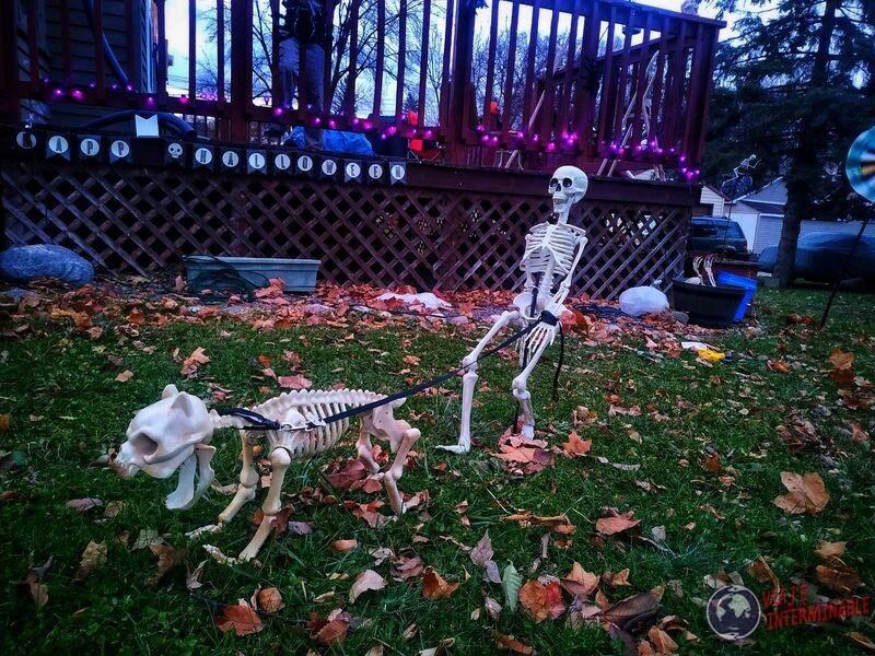 Decoracion halloween esqueleto paseando perro Montevideo Minnesota